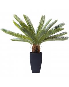 Kare Deco Plant Cycas Tree 78 cm