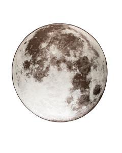 Zuiver Vloerkleed Outdoor Moon Stone Grey 200 cm