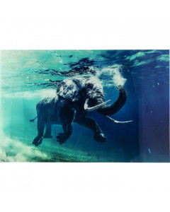 Kare Wandfoto Glass Swimming Elephant 100x80
