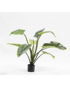 Silk-ka Kunstplant Alocasia Groen 91cm