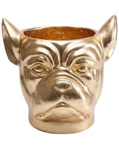 Kare Bloempot Bulldog Gold