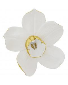 Kare Wanddecoratie Orchid Wit 44 cm