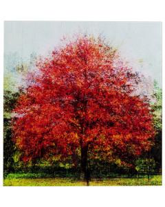 Kare Wandfoto Glass Red Tree