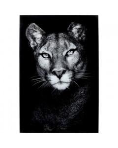 Kare Wandfoto Glass Cat Girl 80x120cm