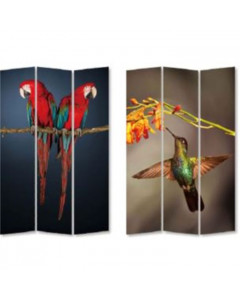 Kare Kamerscherm Twin Parrot vs Cute Colibri