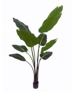 Silk-ka Kunstplant Strelizia Groen 152cm